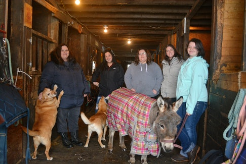 The Stable Way in Grand Falls-Windsor is a peer-led initiative that pairs people with horses to help with mental health and wellness. Pictured (from left) are owner Kathie Lane and peer supporters Angel Osmond, Amanda Rice, Christina Loder and Kaitlyn Hickey. Nicholas Mercer/SaltWire Network