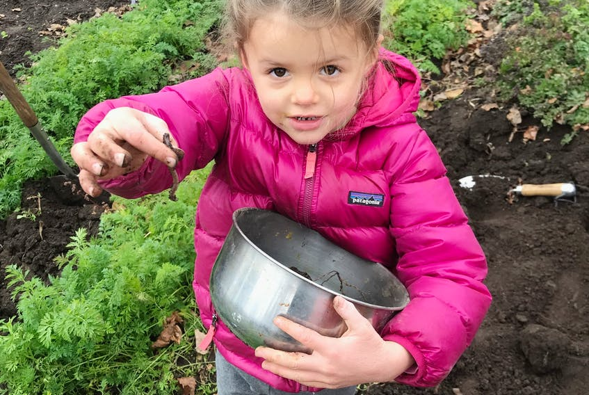 Children like Claudia Seemann, Mark Cullen's granddaughter, enjoy playing with worms.