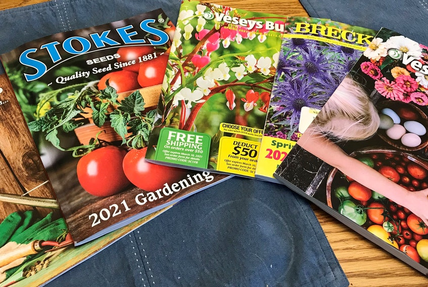 Now is the time to start going through catalogues and websites to order flower and vegetable seeds for this year's growing season.