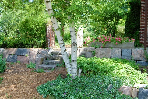 There are plenty of reasons for building a rock garden.