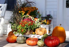 To make a gorgeous display that cascades effortlessly down the sides of your front steps, gather pumpkins and gourds in different shades (white, cream, deep russet, orange) and in various shapes (round, triangular) and sizes (mini to massive).