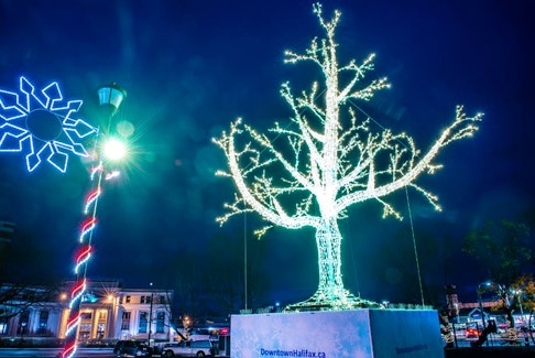 The holiday spirit isn't lacking this year in Downtown Halifax. The new 26-foot-high tree in Peace and Friendship Park is a must-see this holiday season. - Photo Courtesy Stoo Metz.