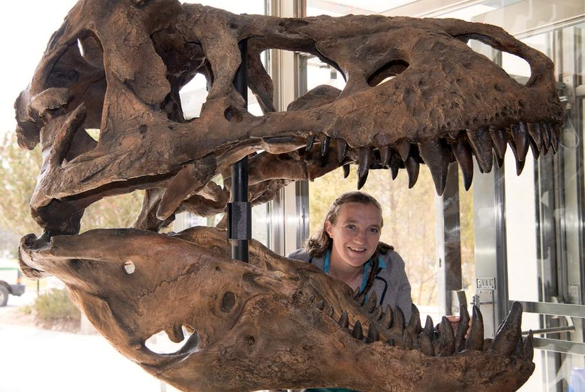 Emily Bamforth, a paleontologist with the Royal Saskatchewan Museum, primarily works out of the T.rex Discovery Centre in Eastend.