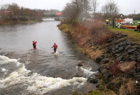 Searchers work in the Salmon River beside the Stanfield ball field in Truro on Thursday, May 7, 2020, as the look for Dylan Ehler, a three-year-old boy who went missing the day before.