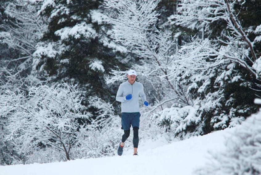 A runner makes the most of a snowy morning in Point Pleasant Park in Halifax on Wednesday, Feb. 12, 2020.