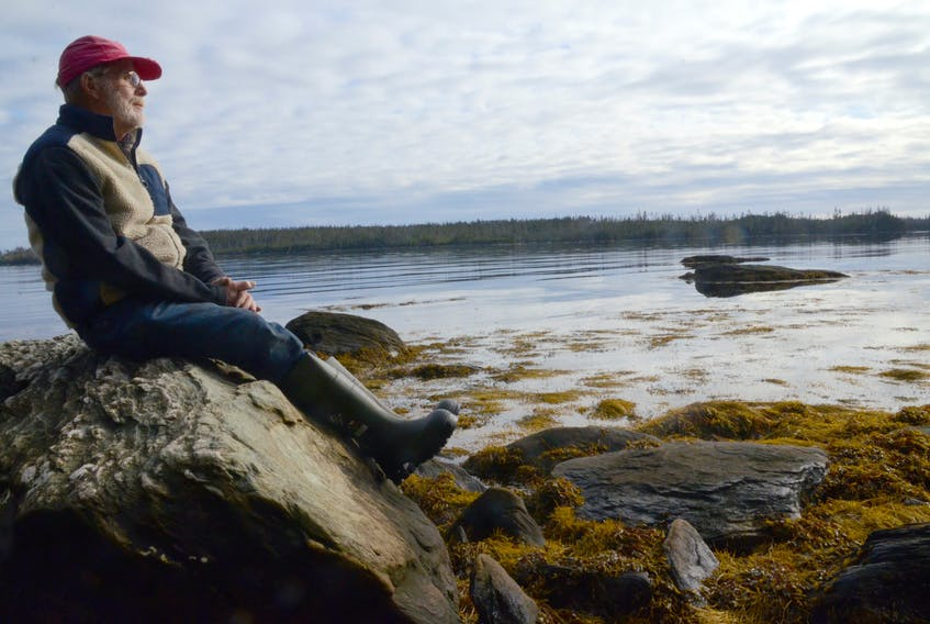 Stephen Mildenberger, a member of a local committee seeking to have the Whale Sanctuary Project located in Mushaboom, looks out over the likely location in December 2019.