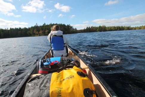 On our second day of paddling, Lucy gains confidence in the bow.