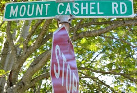 Mount Cashel Road in St. John's runs from New Cove Road to Torbay Road, across from the site of the former boys' orphange. BARB SWEET/THE TELEGRAM