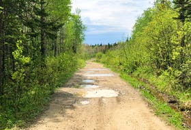 The Pipeline Trail connects the communities of New Waterford, Scotchtown and New Victoria to Killkenny Lake Road. It's one of the most-used ATV trails in the Cape Breton Regional Municipality. JEREMY FRASER/CAPE BRETON POST