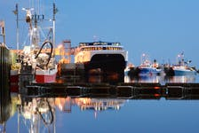 The Cat ferry docked on Yarmouth's waterfront during a previous season. - TINA COMEAU