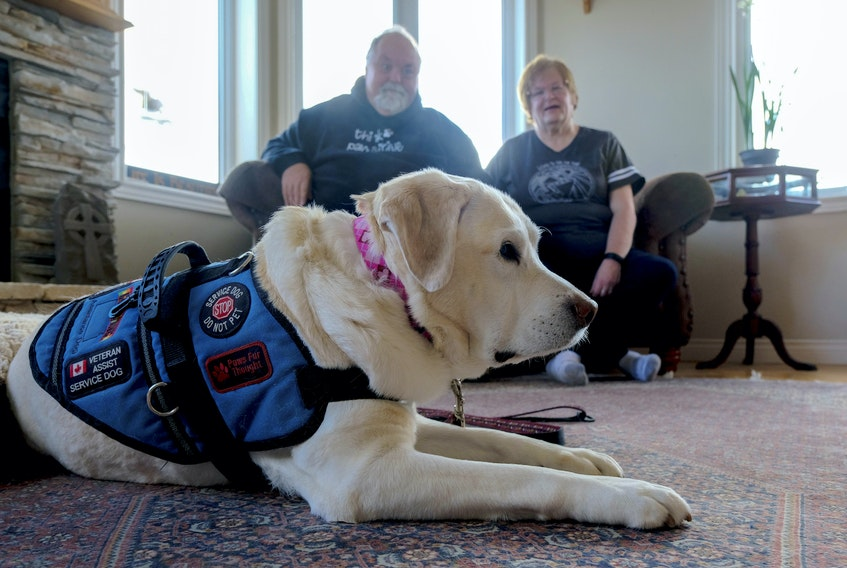 Medric and Jocelyn Cousineau and their service dog, Thai, relax in their Eastern Passage home Thursday. They are getting a meritorious service decoration from the Governor General for starting Paws Fur Thought.   NO CREDIT