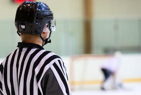 The Kensington Area Minor Hockey Association has asked town council for permission to install four new security cameras at Credit Union Centre to help curtail the abuse some of its officials have been experiencing.