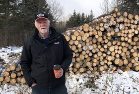 Wayne Gillis, president of Margaree Excavating Limited, stands in front of a clearcut done by his company in the West Lake Ainslie area of Cape Breton. JESSICA SMITH/CAPE BRETON POST