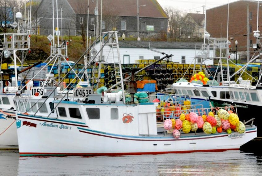 Lobster fleet tied up following delay to season start. TINA COMEAU PHOTO