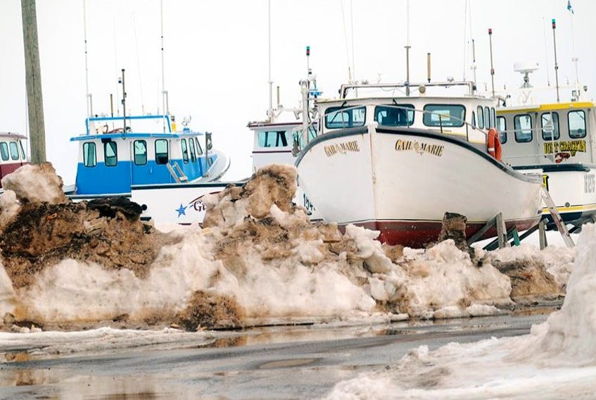 Ice and snow still trap these lobster boats in the wharf in North Rustico.