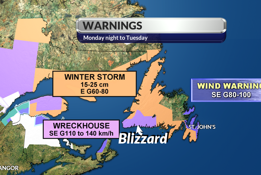Blizzards, winter storms and high winds all in Newfoundland's forecast for the next couple of days. Cindy Day graphic