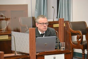 Michael van den Heuvel, a UPEI biologist, speaks before a standing committee on Thursday. The researcher is proposing to build four high capacity wells in P.E.I. in order to study their impacts on streams and on agricultural production.