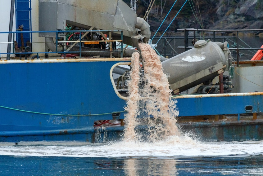 Waste is pumped overboard during part of the cleanup of a massive die-off on more than two million salmon off the coast of Newfoundland in 2019.