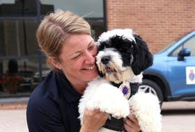 Stella, an 18-week-old Portuguese water dog who works with the RNC, with her handler, Const. Krista Fagan, who said she is thankful for the opportunity to work with the pup. – Andrew Waterman/The Telegram