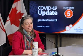 Chief Medical Officer of Health Dr. Janice Fitzgerald speaks during a live video briefing Wednesday in St. John's.