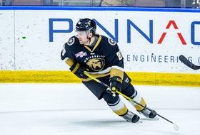 Aaron Luchuk is second in scoring for the Newfoundland Growlers and 11th in the ECHL with 47 points on 18 goals and 29 assists. —  Newfoundland Growlers photo/Jeff Parsons