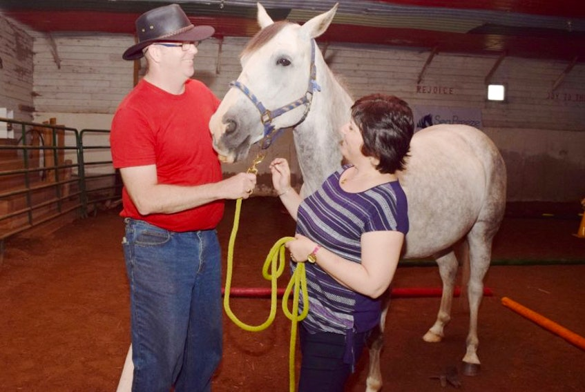 Glen Murphy and June Roberts are shown with Honey, a six-year-old mare.