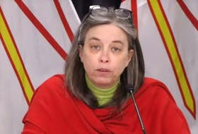 Dr. Janice Fitzgerald, Newfoundland and Labrador's chief medical officer of health. (Photo from video)