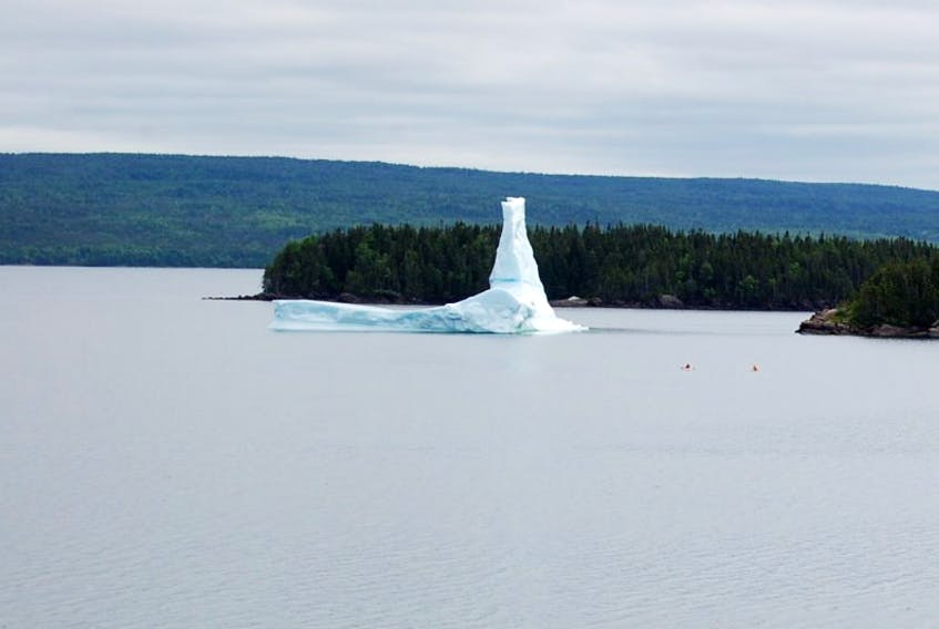 iceberg seen on the west end of Springdale last week as kayakers took a closer view.