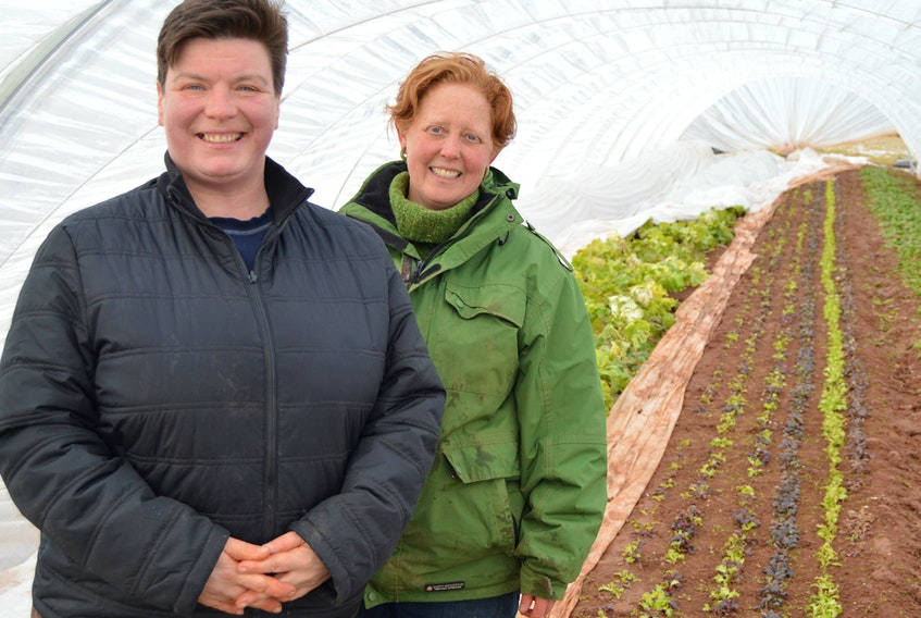 Verena Varga, left, and Amy Smith own and operate Heart Beet Organics in Darlington. The certified organic farm grows, among other products, (as shown in picture) spinach, lettuce and collard greens. DAVE STEWART/THE GUARDIAN