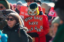 Protesters rally Thursday, Feb. 20, at Province House against the proposed sale of the Owls Head park.