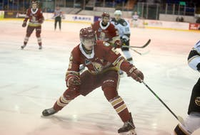Acadie-Bathurst Titan defenceman Cole Larkin is looking forward to returning to game action tonight when the Titan host the Saint John Sea Dogs.