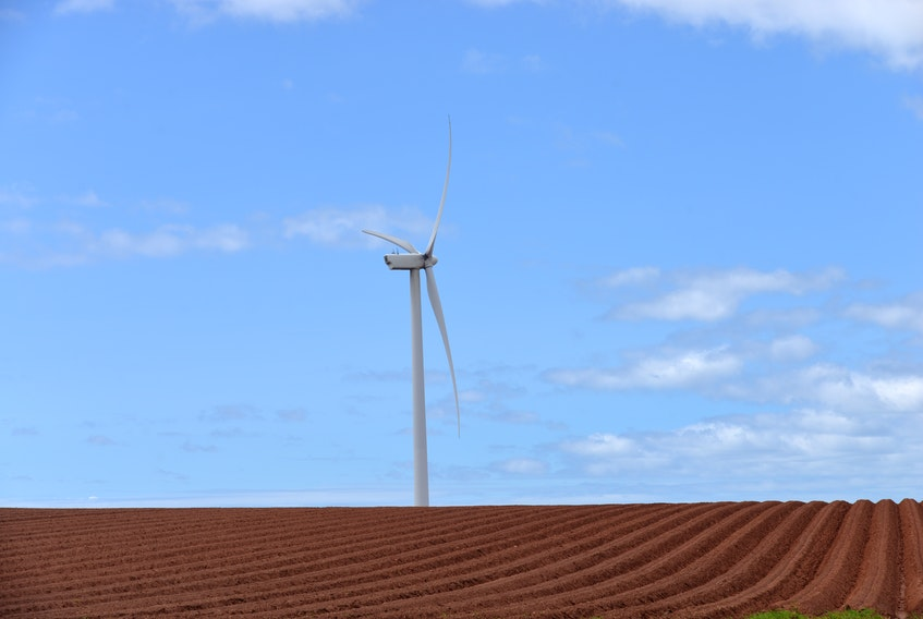 Frontier Power Systems has built four wind farms projects on P.E.I., including the one in East Point, P.E.I., along Northside Road in 2006.