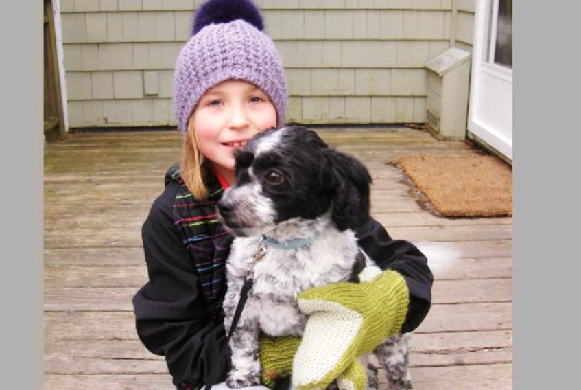 """<p>Name of pet:Osa Riely Duncan</p> <p>Age: one and a half years</p> <p>Breed: Havanese</p> <p>Favourite food:peanut butter</p> <p>Likes: playing indoor fetch, car rides and people</p> <p>Dislikes: being left alone</p> <p>Most human-like quality: feeling jealous</p> <p>Owner: Sophie Duncan</p> <p>Reside in: Wolfville</p> <p>Loves pet because: """"He's extraordinary!""""</p>"""
