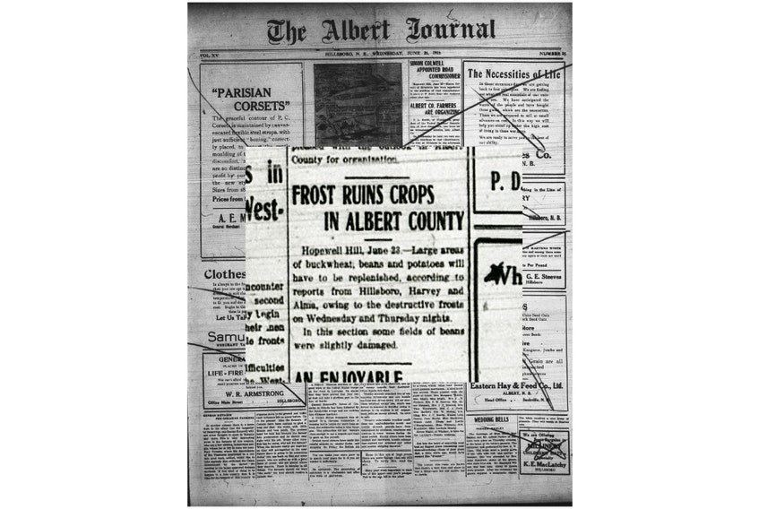 A few years ago, a viewer sent Cindy Day an old newspaper clipping that recounted a devastating late June frost in 1918 in southeastern New Brunswick.
