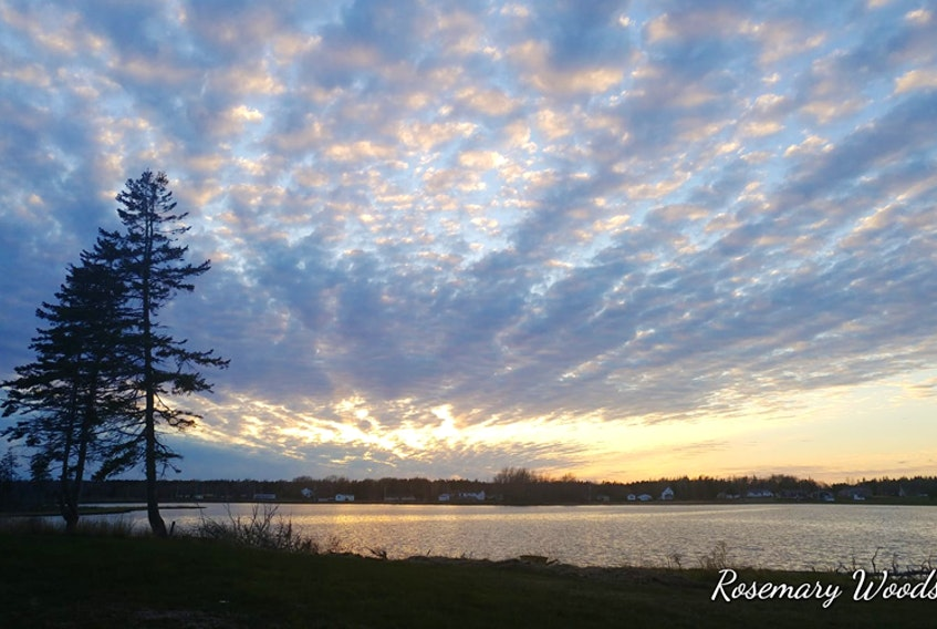 Sunday was quite lovely in Sydney Mines Cape Breton. Rosemary Woods was out enjoying the May sun when she noticed this perplexing pattern in the sky.  She was king enough to share it with those of us who were not treated to the beautiful blanket of clouds.