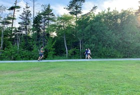 Physical distancing was not a concern for people enjoying urban green spaces, such as Point Pleasant Park, before COVID-19 July 11, 2019
