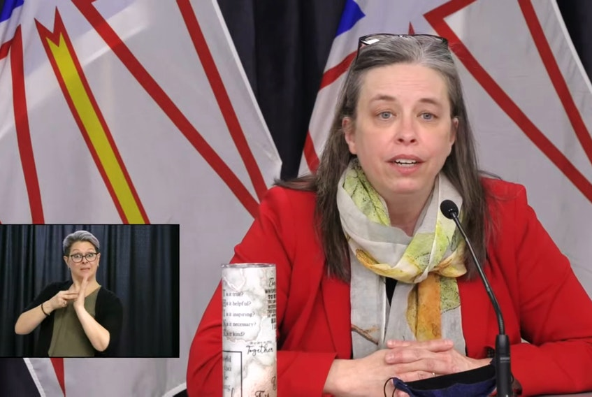 Chief Medical Officer of Health Dr. Janice Fitzgerald. — Video Screengrab
