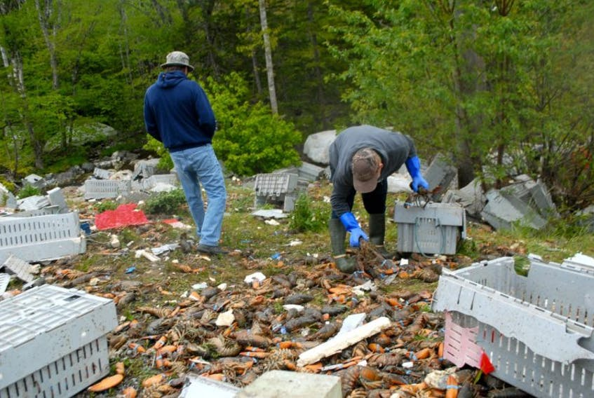 People pick over thousands of pounds of live lobster after a tractor-trailer spilled it's entire load on Highway 103 Friday night. The owner of the plant those lobster were headed for says that's just not acceptable.