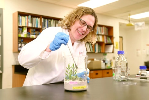 Linda Campbell is a professor in the School of the Environment at Saint Mary's University in Halifax.