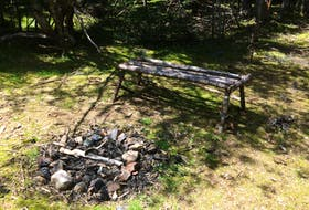 Simple site built by someone, deep in Pippy Park, St. John's. — Russell Wangersky/SaltWire Network