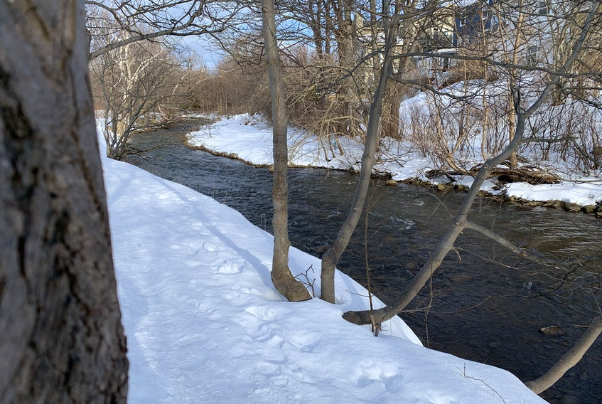 The upgraded Kelly's Brook trail won't include this part of Rennies River any more.