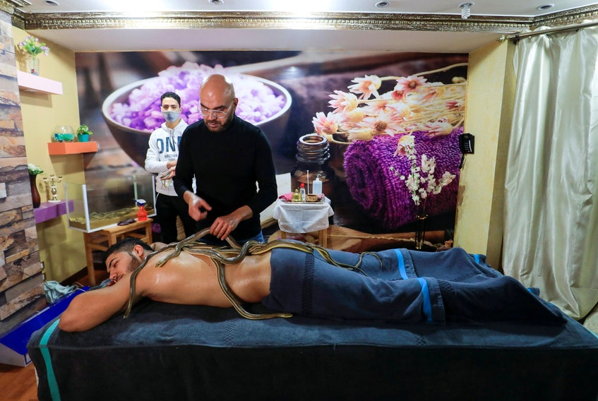 Spa owner Safwat Sedki gives a non-venomous snakes thirty-minute massage treatment to a customer at his shop in Cairo, Egypt.