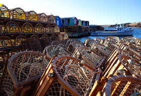 Lobster traps are piled up at Springbrook awaiting the beginning of the season, which has been delayed to May 15.