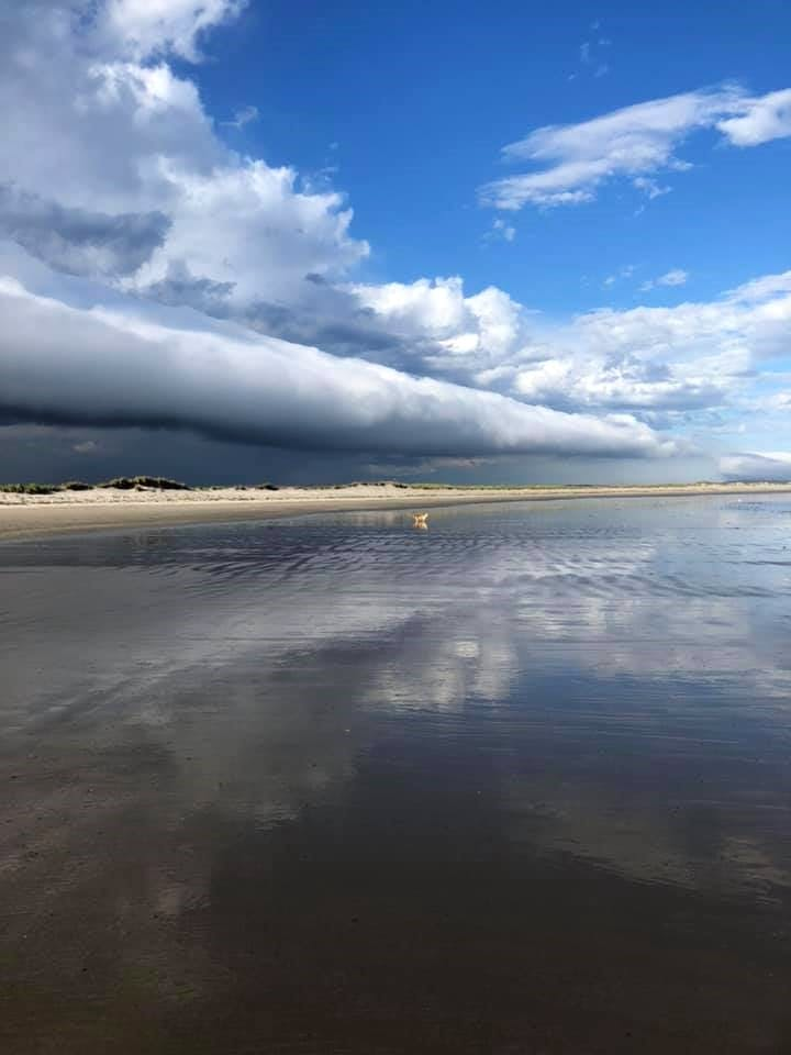 Barb Charteris was out for a stroll with sweet little Sophie when she looked up and was astonished to see this cloud rolling above Martinique Beach, on Nova Scotia's eastern shore, last Tuesday. Barb said it was between 7 and 8 p.m.