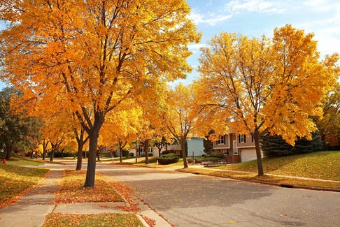 Buying a home this fall might give buyers an even greater advantage. - Photo 123RF
