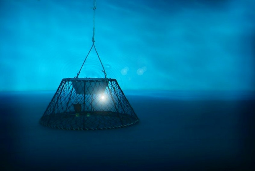 Lit traps were first tested in tanks, through a joint effort of the MUN Fisheries and Marine Institute, and the Department of Fisheries and Oceans.