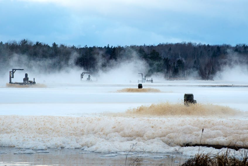 A lawyer for the Pictou Landing First Nation said Wednesday that the community is willing to be patient and wait until the effluent pipe to Boat Harbour is disconnected in April. Northern Pulp's mill is not operating but liquid being sent to the treatment pond would come from running the power boiler to prevent pipes from freezing.