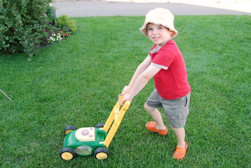 This youngster 'mows' real grass with a toy lawn mower.