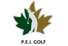 PEI-Logo-Specifications copy