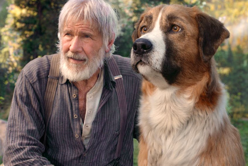 Harrison Ford and Buck are equal in acting skills, but that's because one of them's a digital construct.